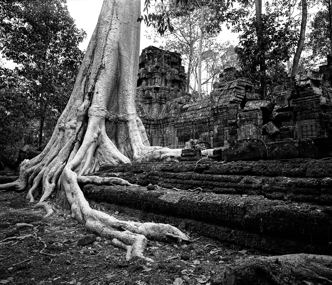 cambodge 6 Vision alternative dAngkor Wat photos argentique analog